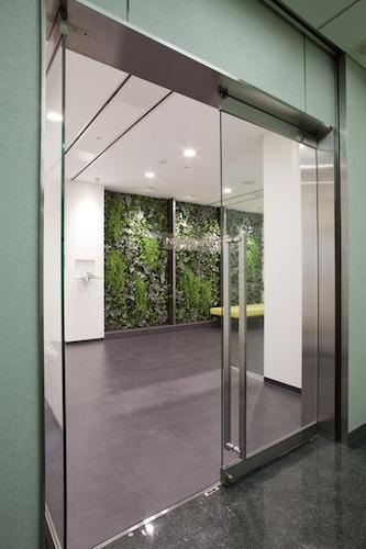 オフィス壁面緑化