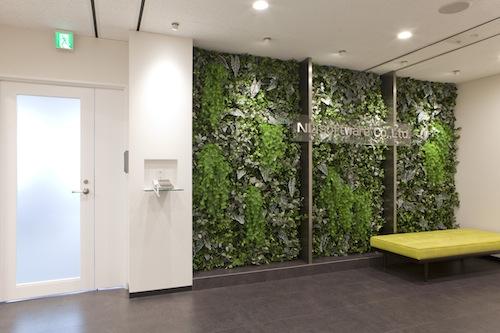 内装壁面緑化