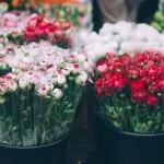 花屋を開業する人必見!必ず人気の出る花屋の内装事情