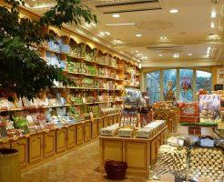 雑貨屋を経営したい!成功に導くお店作りのポイント